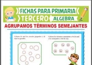 Ficha de Agrupación de Términos Semejantes para Tercer Grado de Primaria