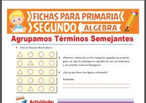 Ficha de Agrupamos Términos Semejantes para Segundo Grado de Primaria