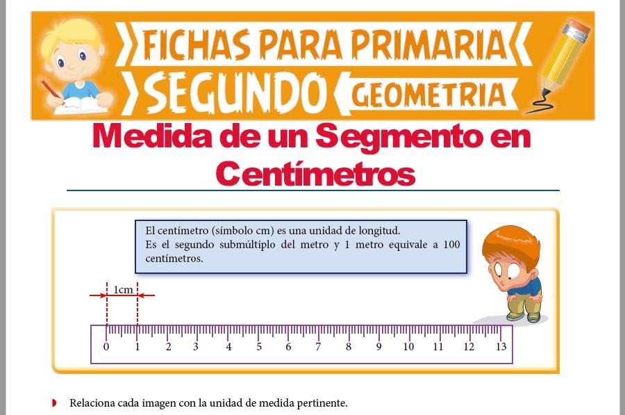 Ficha de Centímetro, Metro y Kilometro para Segundo Grado de Primaria