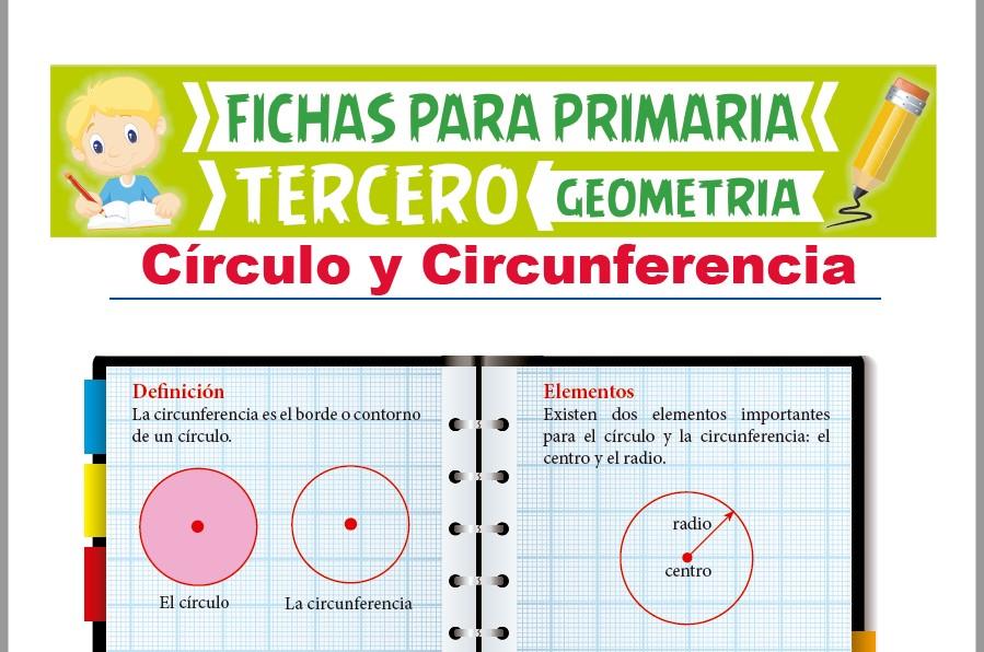 Ficha de Circunferencia y Círculo para Tercer Grado de Primaria