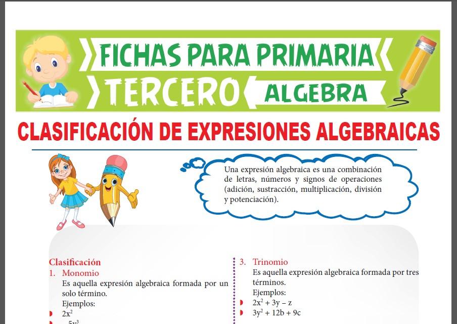 Ficha de Clasificación de Expresiones Algebraicas para Tercer Grado de Primaria
