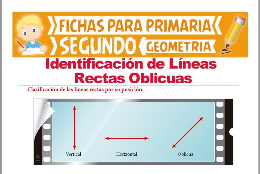 Ficha de Clasificación de las Líneas Rectas por su Posición para Segundo Grado de Primaria