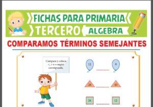 Ficha de Comparación de Términos Semejantes para Tercer Grado de Primaria