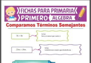 Ficha de Comparamos Términos Semejantes para Primer Grado de Primaria