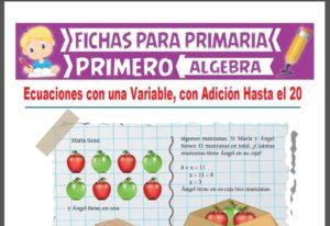 Ficha de Ecuaciones con Adición Hasta el 20 para Primer Grado de Primaria