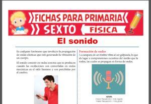 Ficha de El Sonido para Sexto Grado de Primaria