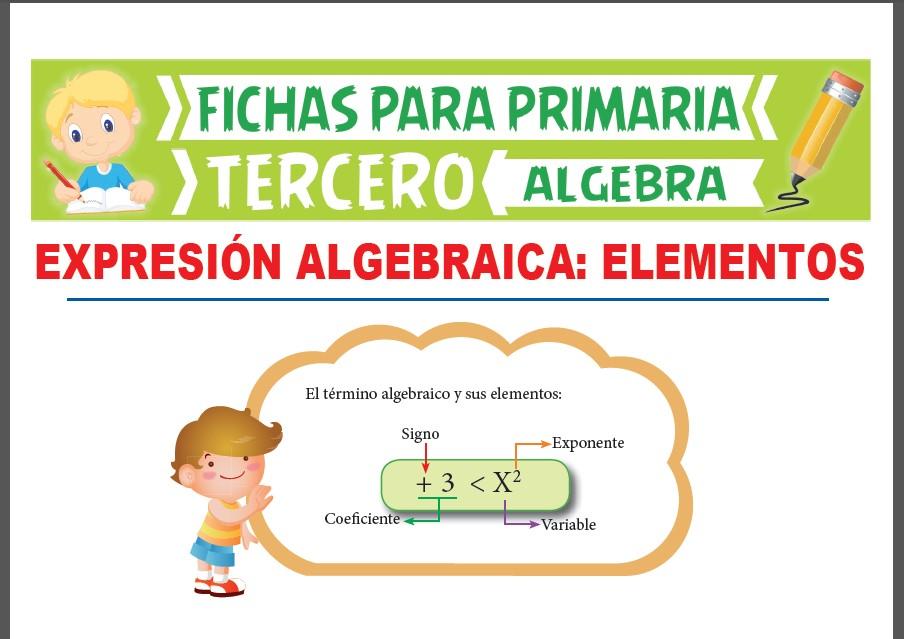 Ficha de Elementos de una Expresión Algebraica para Tercer Grado de Primaria