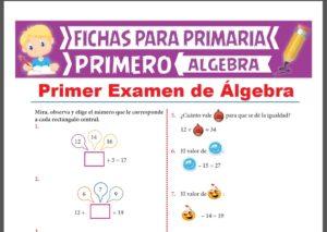 Examenes de Álgebra para Primer Grado de Primaria