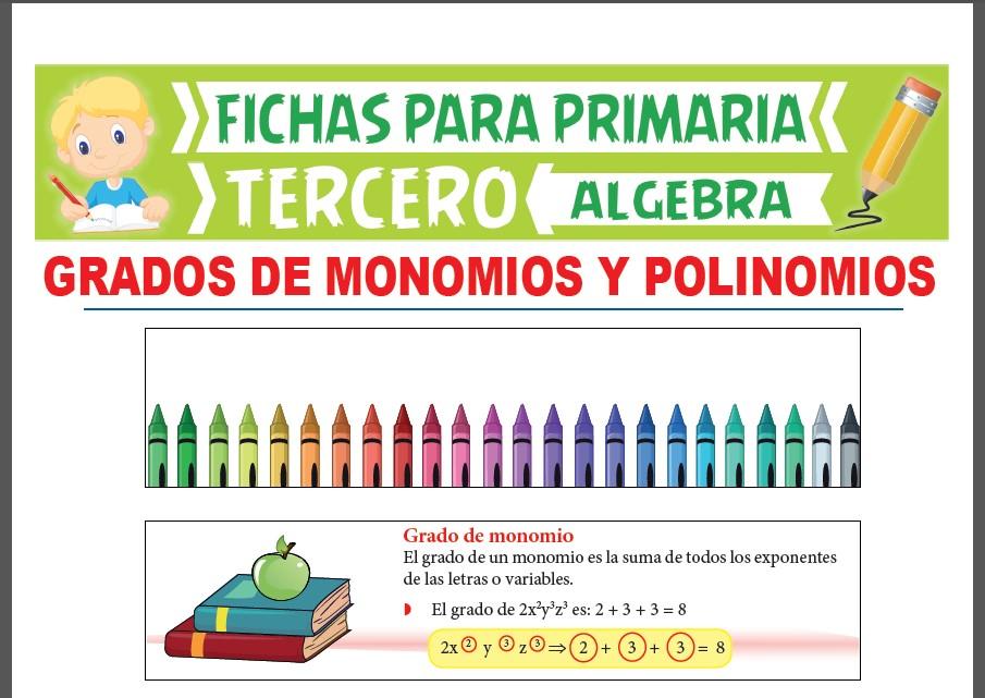 Ficha de Grados de Monomios y Polinomios para Tercer Grado de Primaria