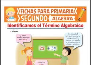 Ficha de Identificamos el Término Algebraico para Segundo Grado de Primaria