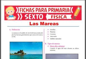 Ficha de Las Mareas para Sexto Grado de Primaria