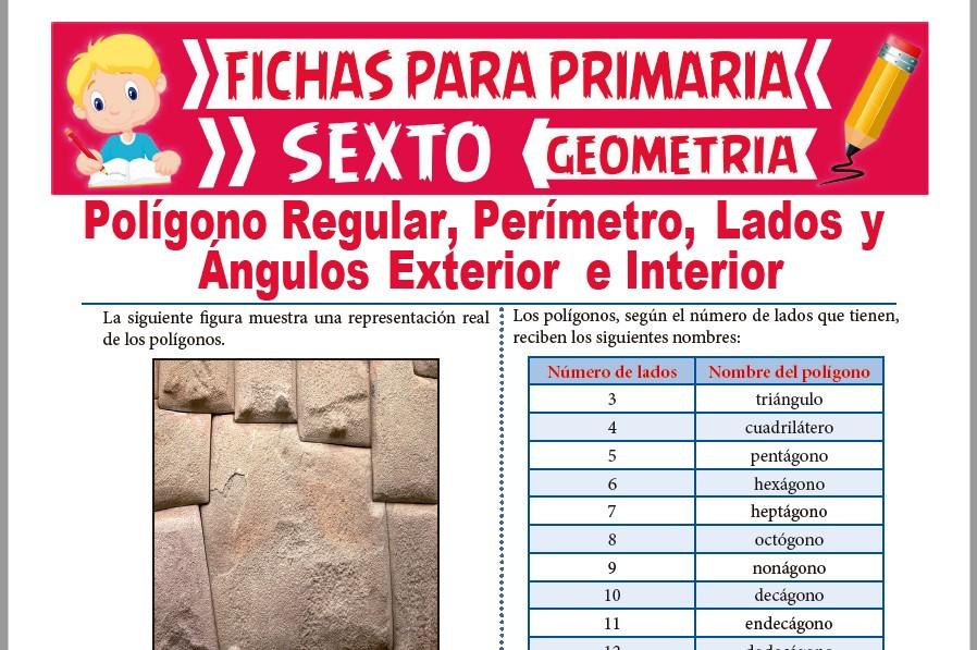 Ficha de Los Polígonos Regulares y sus Propiedades para Sexto de Primaria