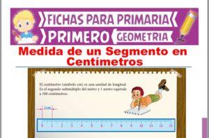 Ficha de Medida de un Segmento en Centímetros para Primer Grado de Primaria