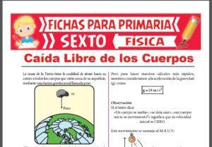 Ficha de Movimiento de Caída Libre para Sexto Grado de Primaria