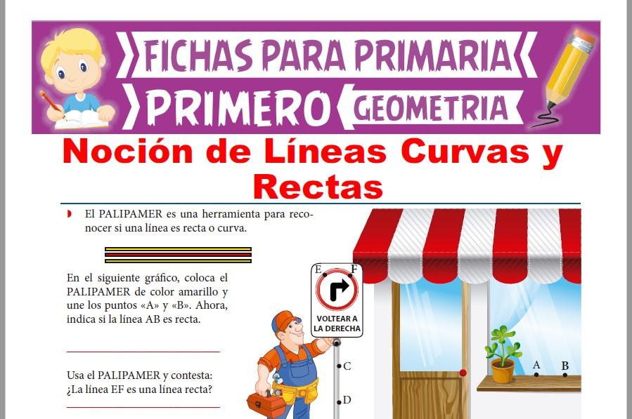 Ficha de Noción de Líneas Curvas y Rectas para Primer Grado de Primaria