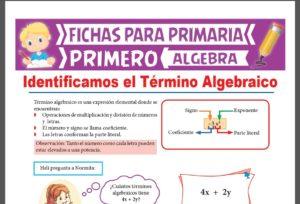 Ficha de Partes del Término Algebraico para Primer Grado de Primaria