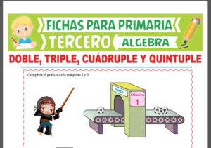 Ficha de Planteo de Ecuaciones con Cuádruple y Quíntuple para Tercer Grado de Primaria