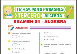 Pruebas de Álgebra para Tercer Grado de Primaria