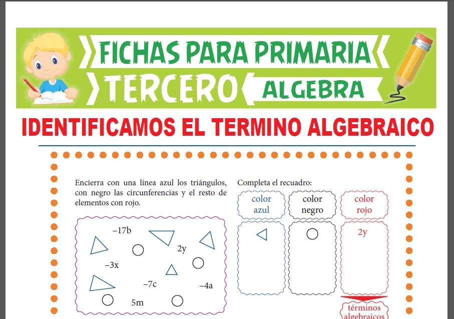 Ficha de Reconocemos el Término Algebraico para Tercer Grado de Primaria