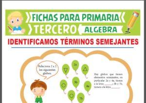 Ficha de Reconocemos el Término Semejantes para Tercer Grado de Primaria