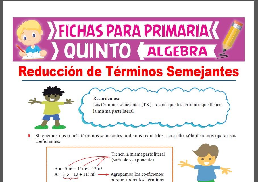 Ficha de Recordando los Términos Semejantes para Quinto Grado de Primaria