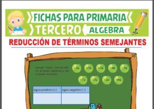 Ficha de Reducción de Términos Semejantes para Tercer Grado de Primaria