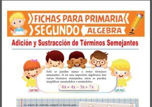 Ficha de Suma y Resta de Términos Semejantes para Segundo Grado de Primaria