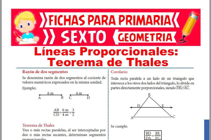 Ficha de Teorema de Thales para Sexto de Primaria
