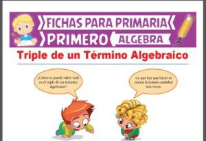 Ficha de Triple de un Término Algebraico para Primer Grado de Primaria