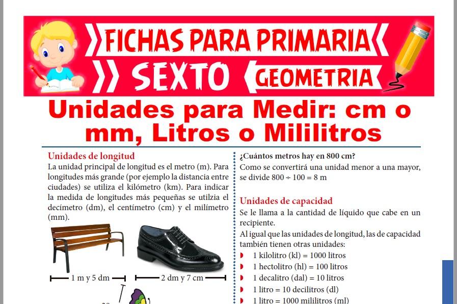 Ficha de Unidades para Medir para Sexto de Primaria