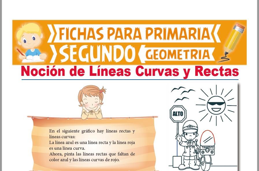 Ficha de Líneas Curvas y Líneas Rectas para Segundo Grado de Primaria