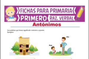 Ficha de Actividades de los Antónimos para Primer Grado de Primaria