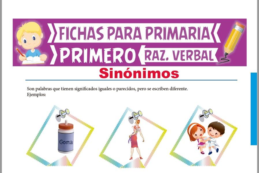 Ficha de Actividades de los Sinónimos para Primer Grado de Primaria