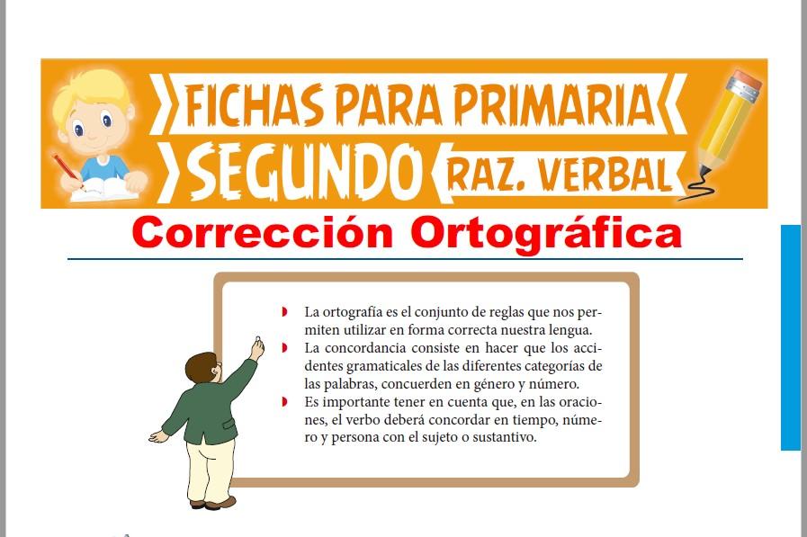 Ficha de Corrección Ortográfica para Segundo Grado de Primaria