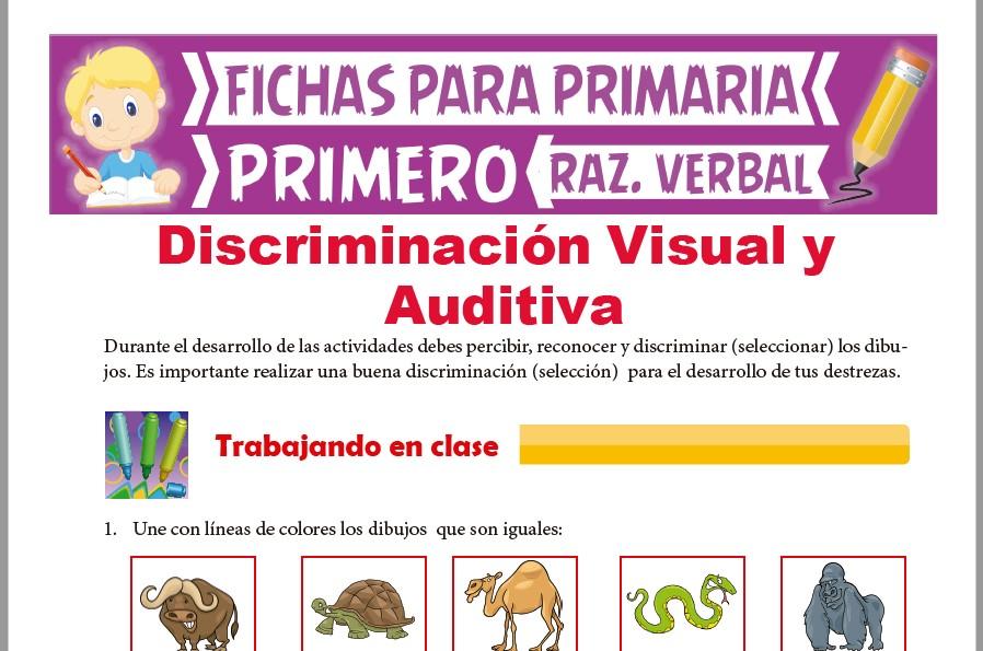 Ficha de Discriminación Visual y Auditiva para Primer Grado de Primaria