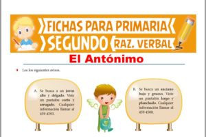 Ficha de Ejercicios de Antónimos para Segundo Grado de Primaria