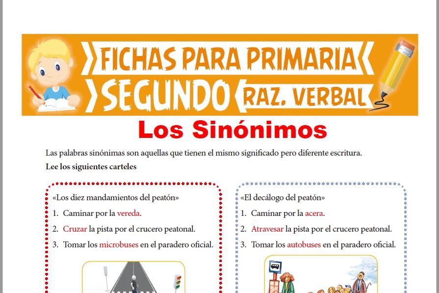 Ficha de Ejercicios de Sinónimos para Segundo Grado de Primaria