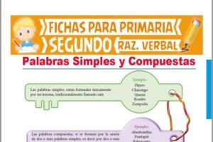 Ficha de Palabras Simples y Compuestas para Segundo Grado de Primaria