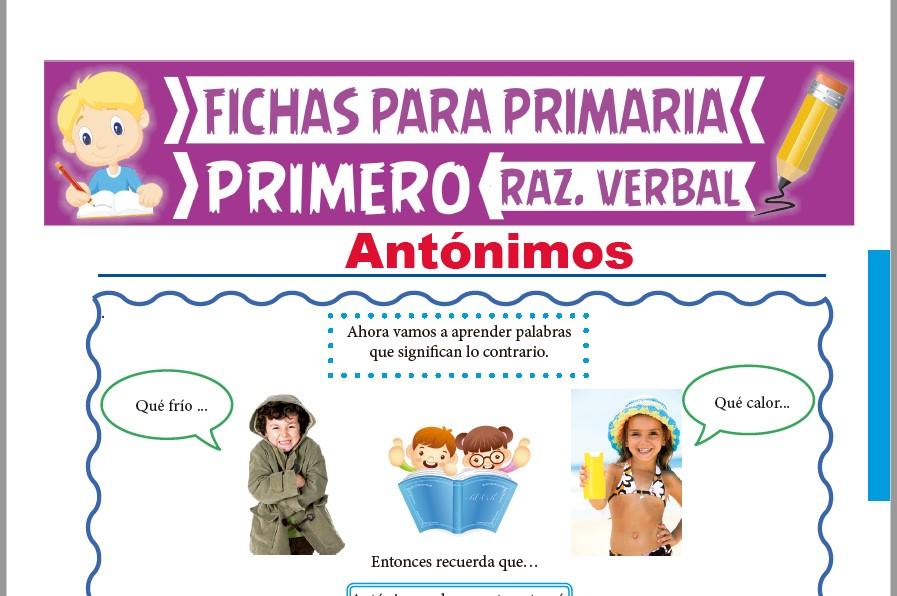 Ficha de Qué son los Antónimos para Primer Grado de Primaria