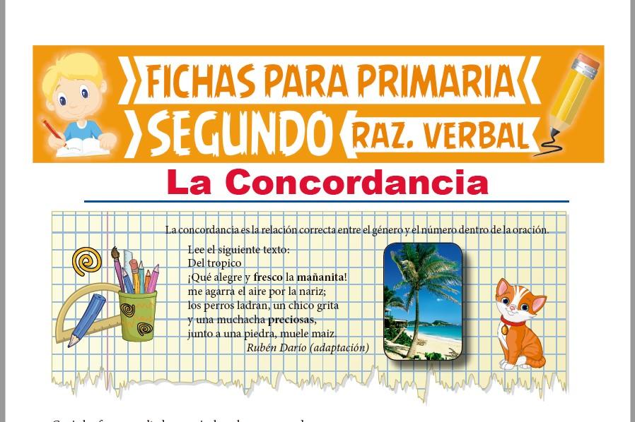 Ficha de Que es la Concordancia para Segundo Grado de Primaria