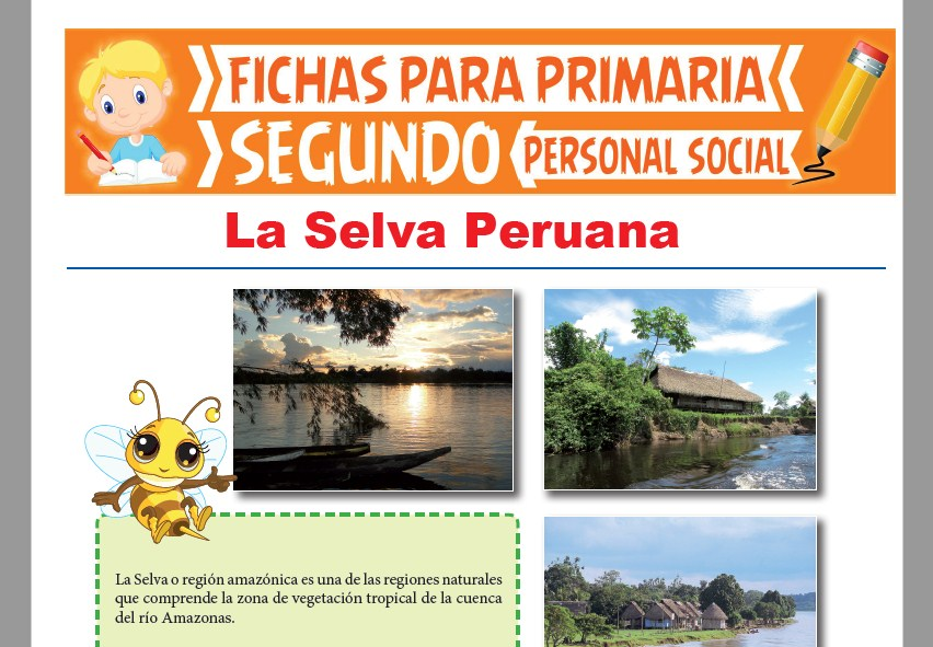 Ficha de La Selva Peruana para Segundo Grado de Primaria