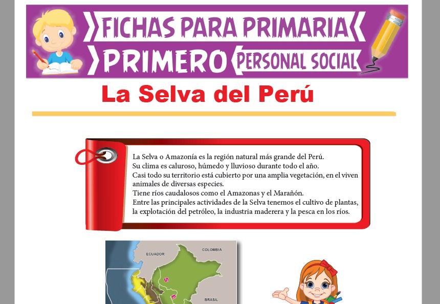 Ficha de La Selva del Perú para Primer Grado de Primaria