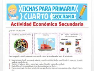 Ficha de Actividad Económica Secundaria para Cuarto Grado de Primaria