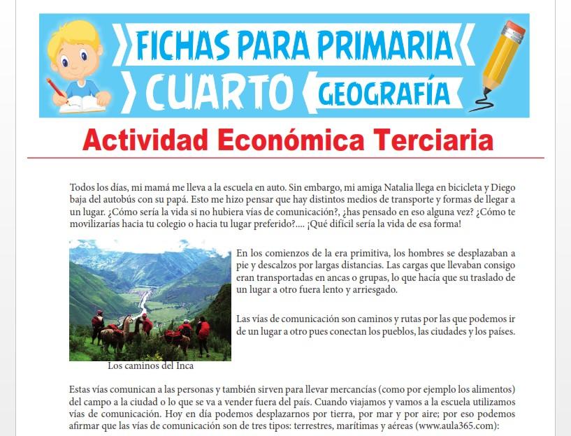 Ficha de Actividad Económica Terciaria para Cuarto Grado de Primaria