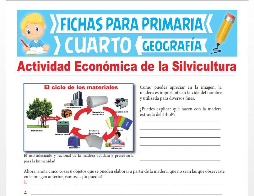 Ficha de Actividad Económica de la Silvicultura para Cuarto Grado de Primaria