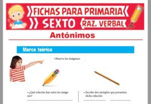 Ficha de Antónimos Ejercicios para Sexto Grado de Primaria