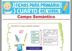 Ficha de Campo Semántico Ejercicios para Cuarto Grado de Primaria
