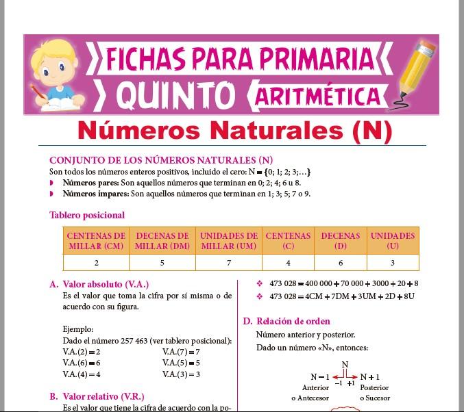 Ficha de Conjunto de los Números Naturales para Quinto Grado de Primaria