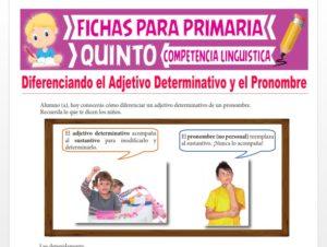 Ficha de Diferenciando el Adjetivo Determinativo y el Pronombre para Quinto Grado de Primaria