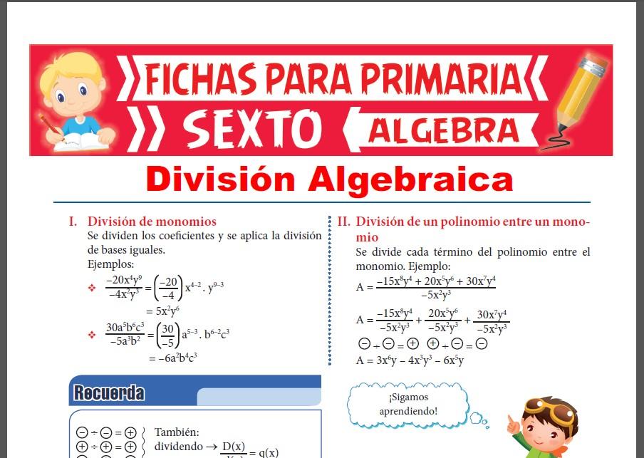 Ficha de División Algebraica para Sexto Grado de Primaria